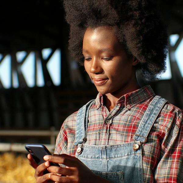 Gathering Livestock data through Artificial Intelligence - Blog Farm4Trade