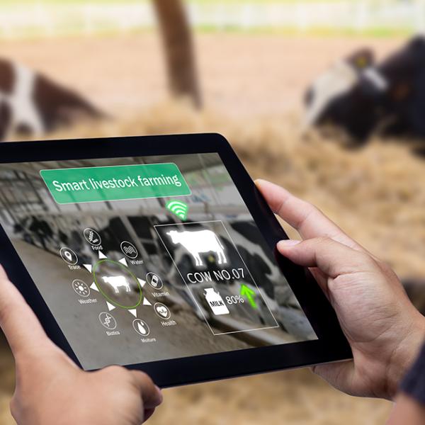 Farm4Trade R&D contributes in major advancements of AI technologies - Blog Farm4Trade